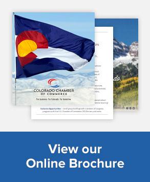 View Online Brochure