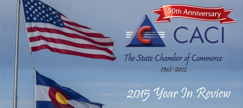 CACI 2015 Year in Review Member Video